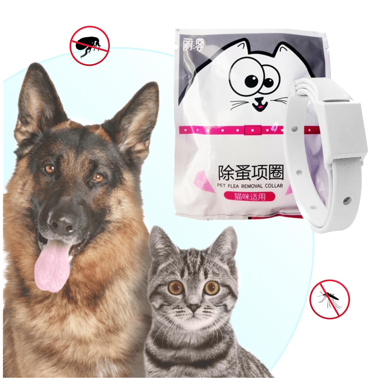 Collar Anti-Pulgas Para Mascotas Gato Perro