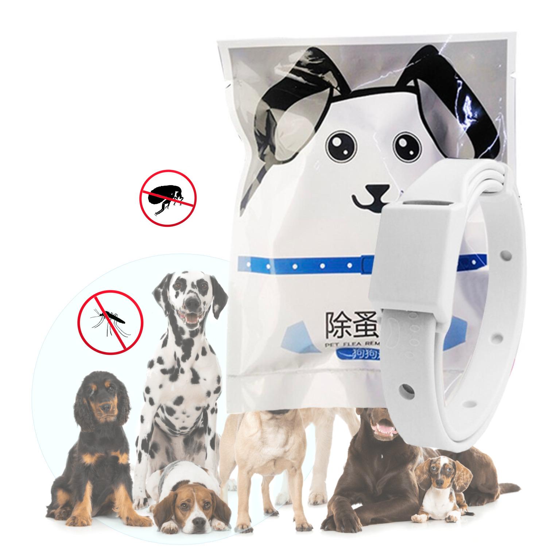 Collar Para Mascotas Antiparasito Ajustable Gris Perro